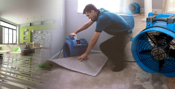WATER DAMAGE REMOVAL London, Ontario